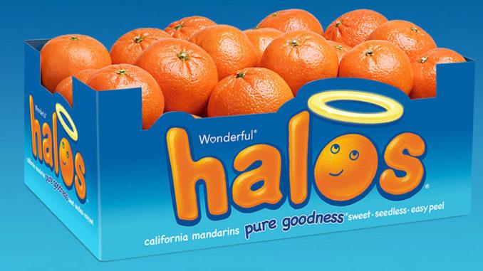Halos POP Retail Displays