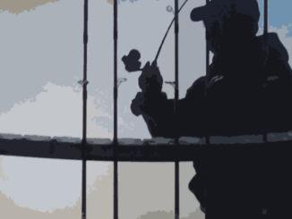 Shimano Sedona